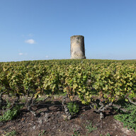 From Saint-Emilion to Sauternes