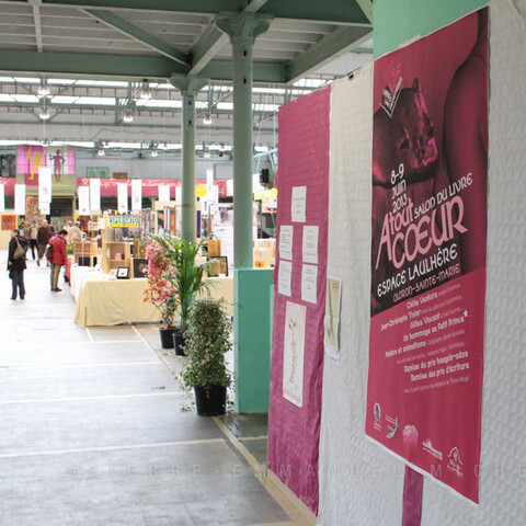 Oloron book fair I